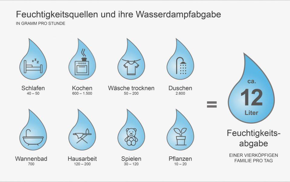 Schimmelsanierung Hamburg Reinbek Schwarzenbek Wentorf Glinde Aumühle Schimmel entfernen Wohnung Haus Schimmel